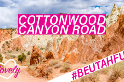 Von Dirtroad zu Dirtroad – Kanab – Tag 7 – #beUtahful USA Roadtrip 2018